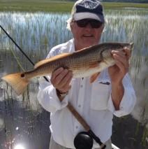 Happy Tailing Redfish